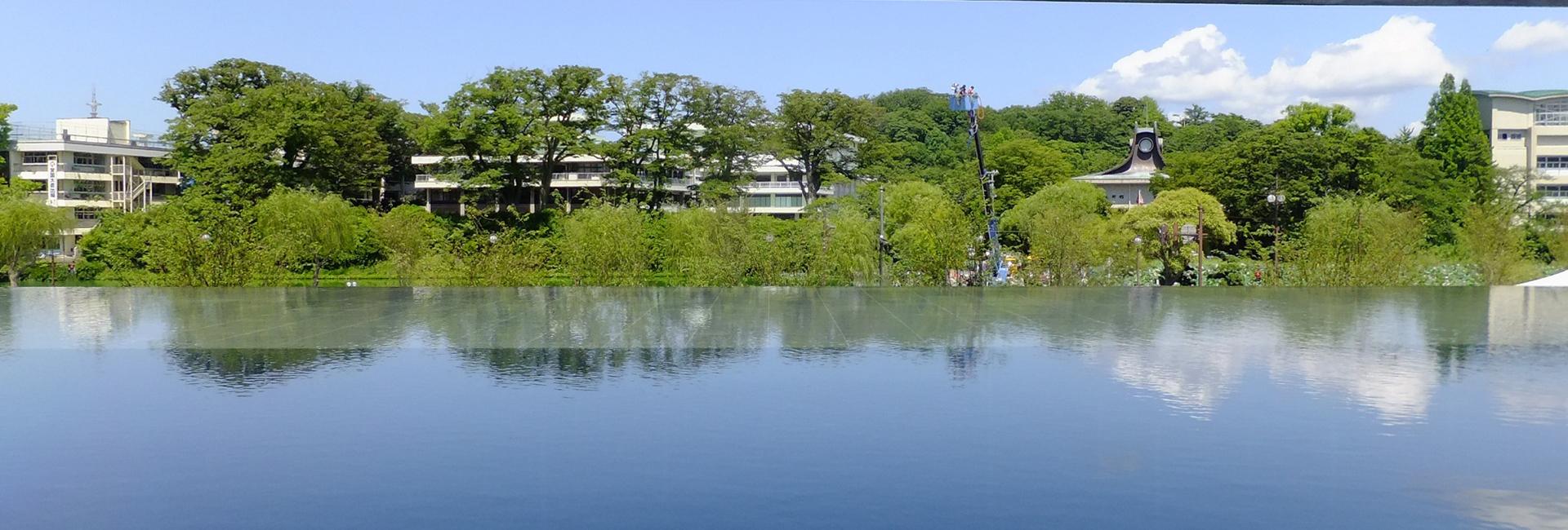 Akita in Japan