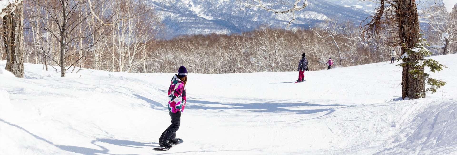 ski slope in Niseko