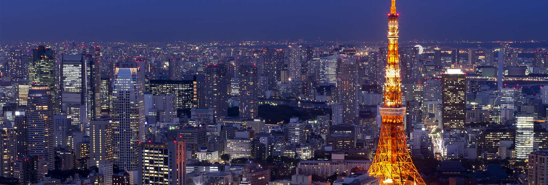 Tokyo the nuit