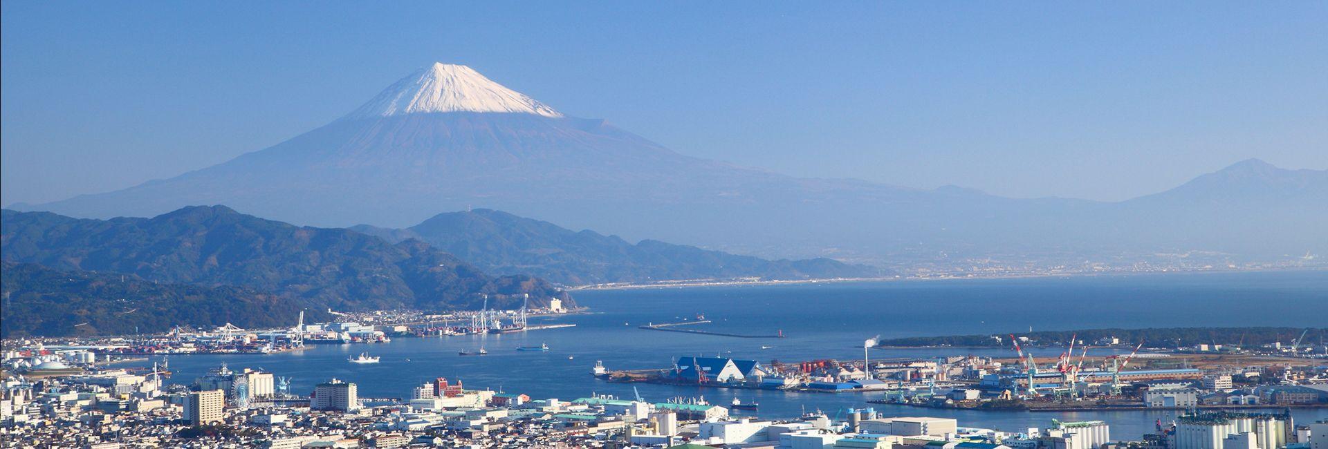 Shizuoka port and Mount Fuji