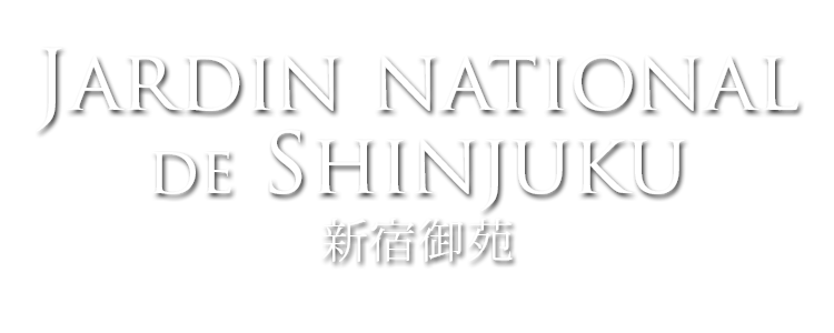 jardin national de shinjuku gyoen