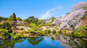 jardin Shinjuku gyoen