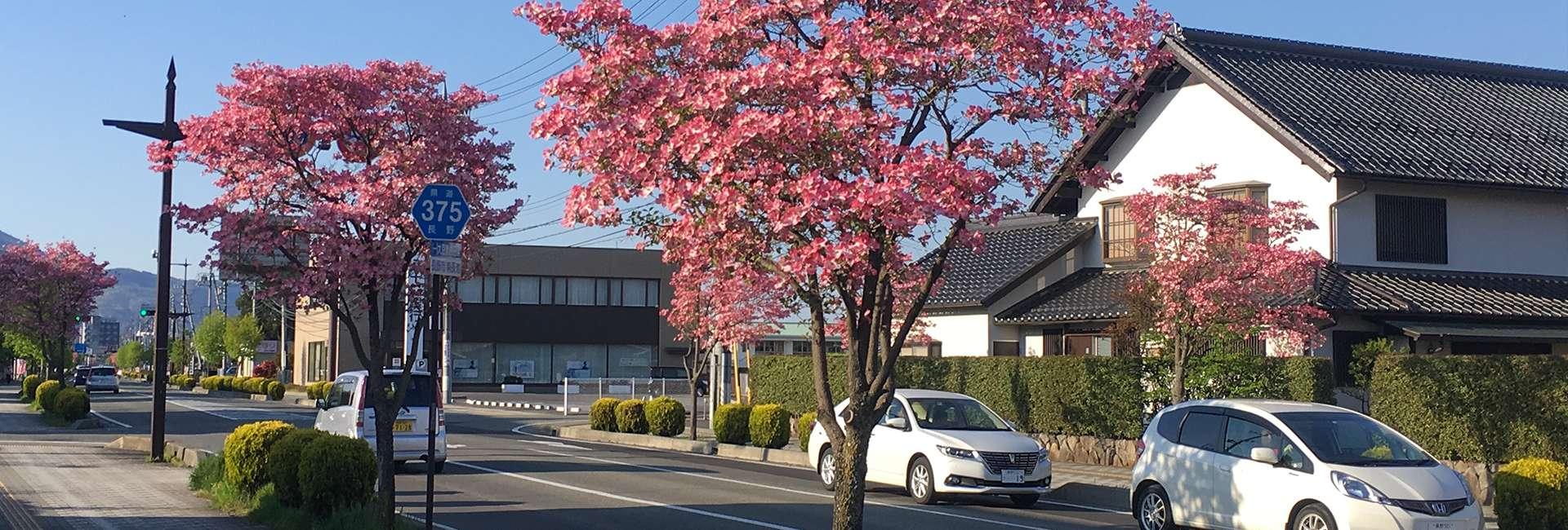 Nagano au Japon