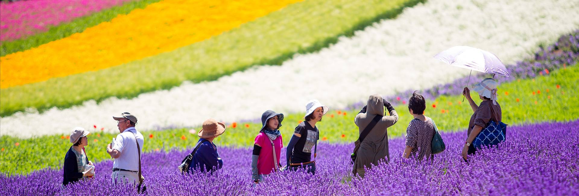 Furano au Japon