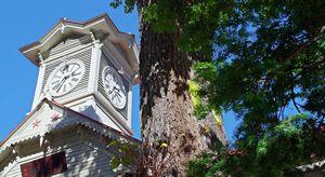 tour de l'horloge de Sapporo