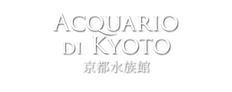 acquario di kyoto