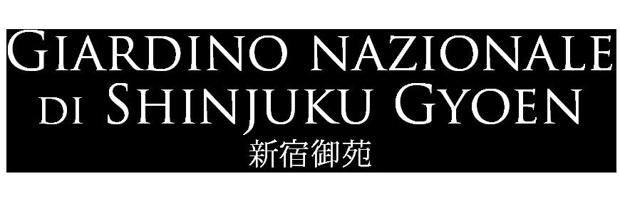 giardino nazionale shinjuku gyoen tokyo