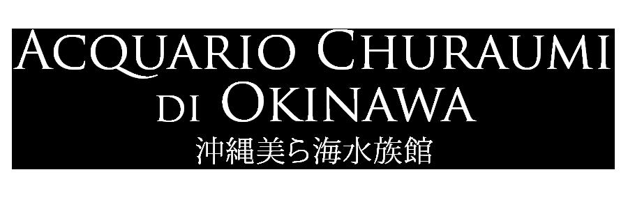 acquario churaumi di okinawa