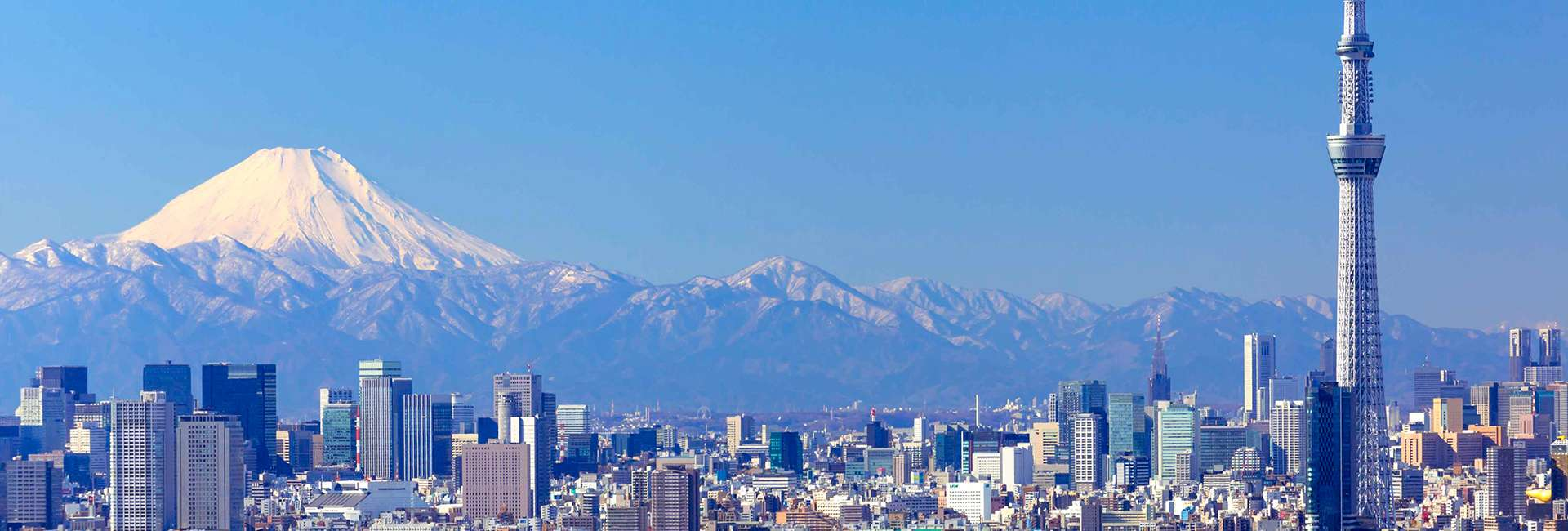 Vista di Tokyo con il Monte Fuji
