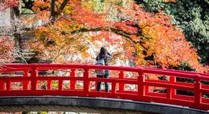 Parco quasi nazionale Meiji no Mori Mino